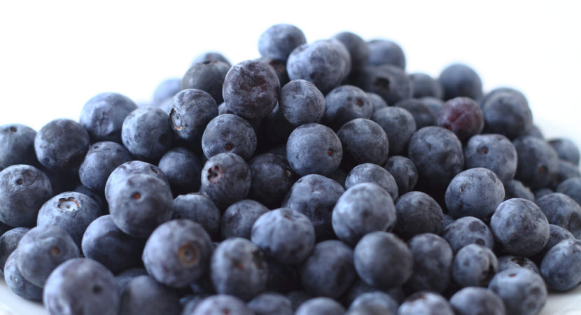 Blueberry concentrate improves brain function in older people