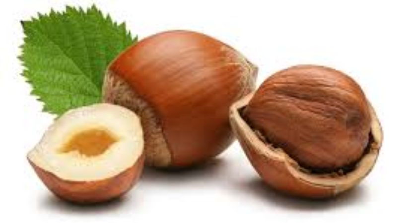 Hazelnuts improve older adults micronutrient levels study shows