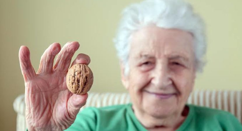 Walnuts may slow cognitive decline in at risk elderly