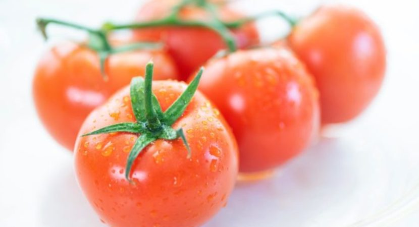 Should tomatoes go in the fridge