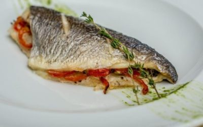 European sea bass absorb virtually no microplastic in their muscle tissue