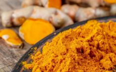 Turmeric could have antiviral properties