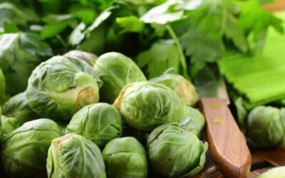 Broccoli and Brussels sprouts a cut above for blood vessel health