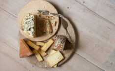 Those funky cheese smells allow microbes to talk to and feed each other